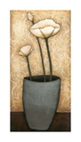 Mon Jardine I Giclee Print by H. Alves