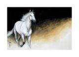 Light and Dark Giclee Print by Milenko Katic