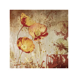 Poppy Heat II Giclee Print by Tandi Venter