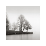 Fog and Trees at Dusk Giclée-tryk af  Lsh