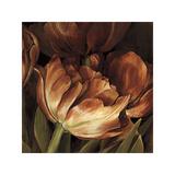 Color Harmony II Giclee Print by Linda Thompson