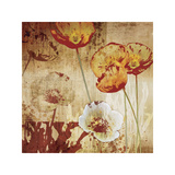 Poppy Heat I Giclee Print by Tandi Venter