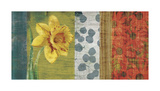 Garden Collection I Giclee Print by Tandi Venter
