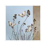 Butterflies Giclee Print by Caroline Gold