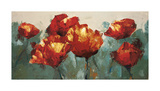 Poppies On Slate Giclee Print by Peter Colbert