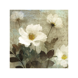 Anemone I Giclee Print by Keith Mallett