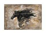 Black Beauty Giclee Print by Marta G. Wiley
