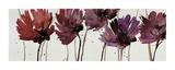 Blushing Blooms Giclee Print by Natasha Barnes