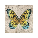 Butterflies I Giclee Print by Tandi Venter