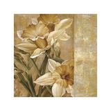 Champagne Daffodils I Giclee Print by Linda Thompson