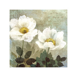 Anemone II Giclee Print by Keith Mallett