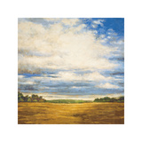 Tranquil Meadow Giclee Print by Zenon Burdy