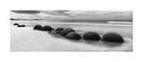 Moeraki Boulders Panorama Giclee Print by Monte Nagler