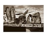 Big Foot Posters par Barry Hart