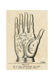 Palmistry: Palm Diagram Prints by Unknown Unknown