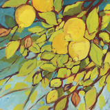 The Lemons Above Plakaty autor Jennifer Lommers