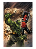 Incredible Hulks 627 Cover: Hulk and Red She-Hulk Fighting Posters by Doug Braithwaite