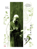 5 Ronin No.2 Cover: Bruce Banner Posters by David Aja