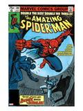 Amazing Spider-Man No.200 Cover: Spider-Man Fighting Print