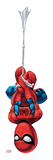 Marvel Super Hero Squad: Spider-Man Swinging Prints