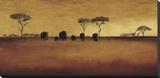 Serengeti II Stretched Canvas Print by Tandi Venter