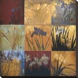 Iris Nine Patch II Stretched Canvas Print by Don Li-Leger