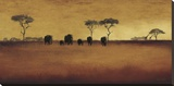 Serengeti II Stretched Canvas Print by Tandi Venter
