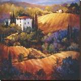 Evening Glow Tuscany Stretched Canvas Print by Nancy O'toole