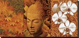 Buddha Panel II Stretched Canvas Print by Keith Mallett