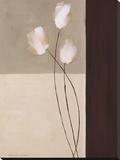 Floral Whispers I Stretched Canvas Print by Karen Lorena Parker
