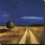 The Way Home Stretched Canvas Print by Tandi Venter
