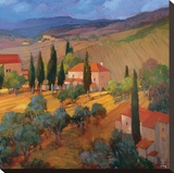 Coral Sunset Tuscany Stretched Canvas Print by Philip Craig