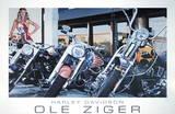 Harley Davidson Plakaty autor Ole Ziger