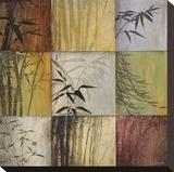 Bamboo Nine Patch II Leinwand von Don Li-Leger