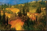 Hillside - Tuscany Stretched Canvas Print by Philip Craig