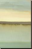 Dusk Stretched Canvas Print by Caroline Gold
