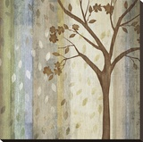 Changing Seasons I Stretched Canvas Print by Tandi Venter
