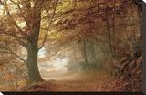 Autumn Dream Stretched Canvas Print by Toni Vila