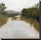 River Journey Stretched Canvas Print by Megan Lightell