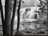 Bond Falls & Trees Stretched Canvas Print by Monte Nagler