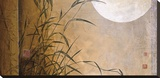 Lakeside Moonrise Stretched Canvas Print by Don Li-Leger