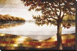 Lake Mamry Stretched Canvas Print by Zenon Burdy