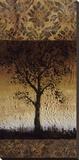 Oak Tree II Stretched Canvas Print by Lynn Kelly