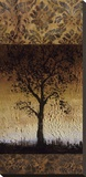 Oak Tree II Stretched Canvas Print by Lynn Kelly
