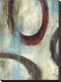 Grayson's Loops II Leinwand von Wani Pasion