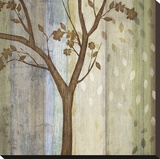 Changing Seasons II Stretched Canvas Print by Tandi Venter
