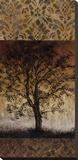 Oak Tree I Stretched Canvas Print by Lynn Kelly