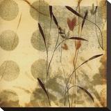 Playful Meadow II Reproduction transférée sur toile par Fernando Leal