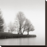 Fog and Trees at Dusk Stretched Canvas Print by  Lsh