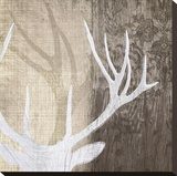 Deer Lodge II Stretched Canvas Print by Tandi Venter